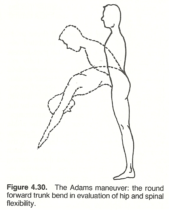 CHAPTER 4: BODY ALIGNMENT, POSTURE, AND GAIT