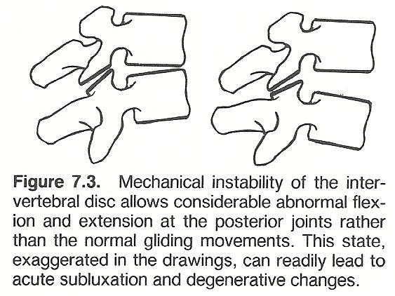 Chapter 7 The Cervical Spine