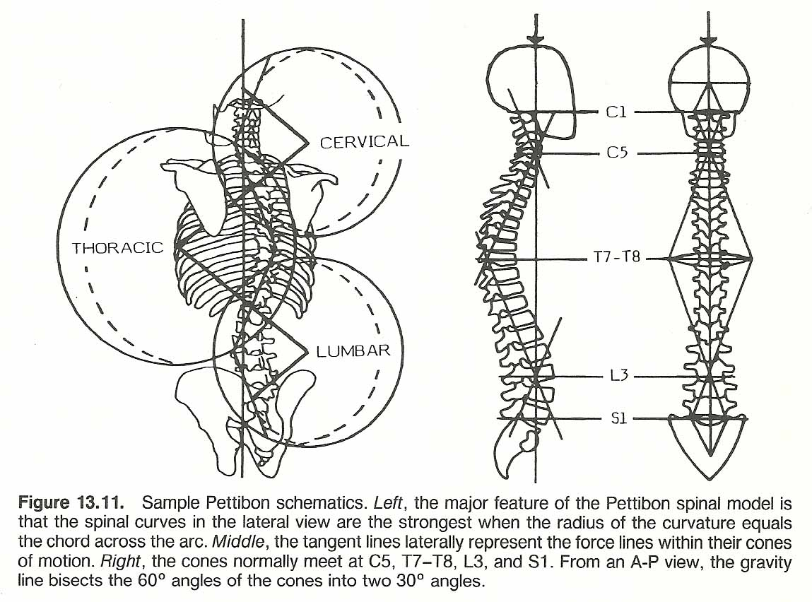 Treatment of osteochondrosis of the cervico-thoracic spine - the most popular methods