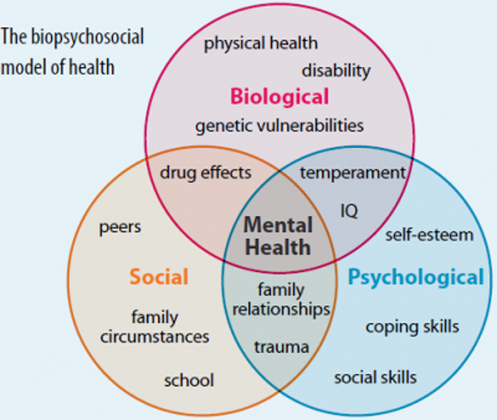 Interview with an individual with health issues biopsychosocial essay
