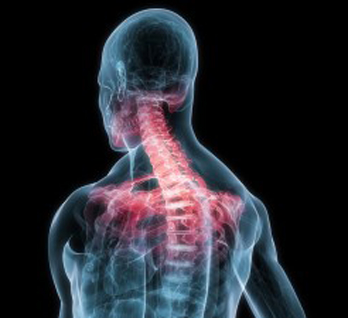 Association Between Utilization of Chiropractic Services for Treatment of Low Back Pain and Risk of Adverse Drug Events
