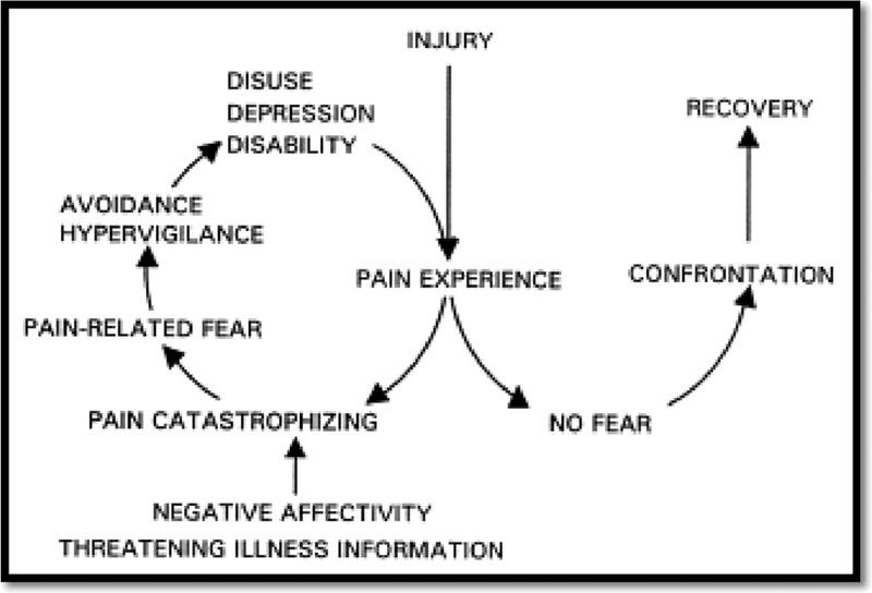 Rethinking the Fear Avoidance Model