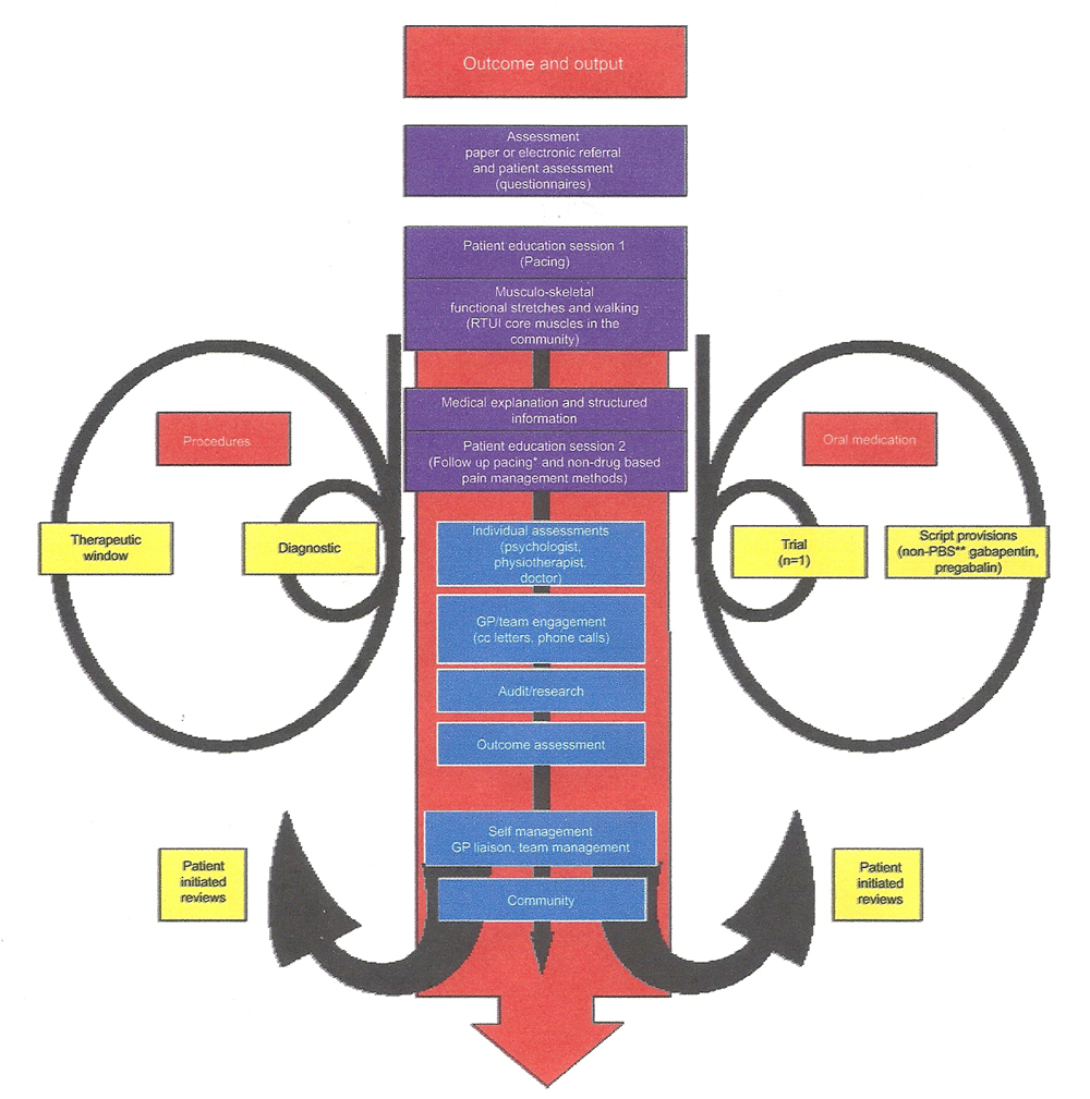 Looking Ahead Chronic Spinal Pain Management Cat Skeleton Moreover Knee Muscles And Tendons Diagram In Addition Figure 1 Flow Of An Example The Patient Journey Service Processes For