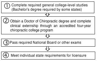 Chiropractic college degree subjects